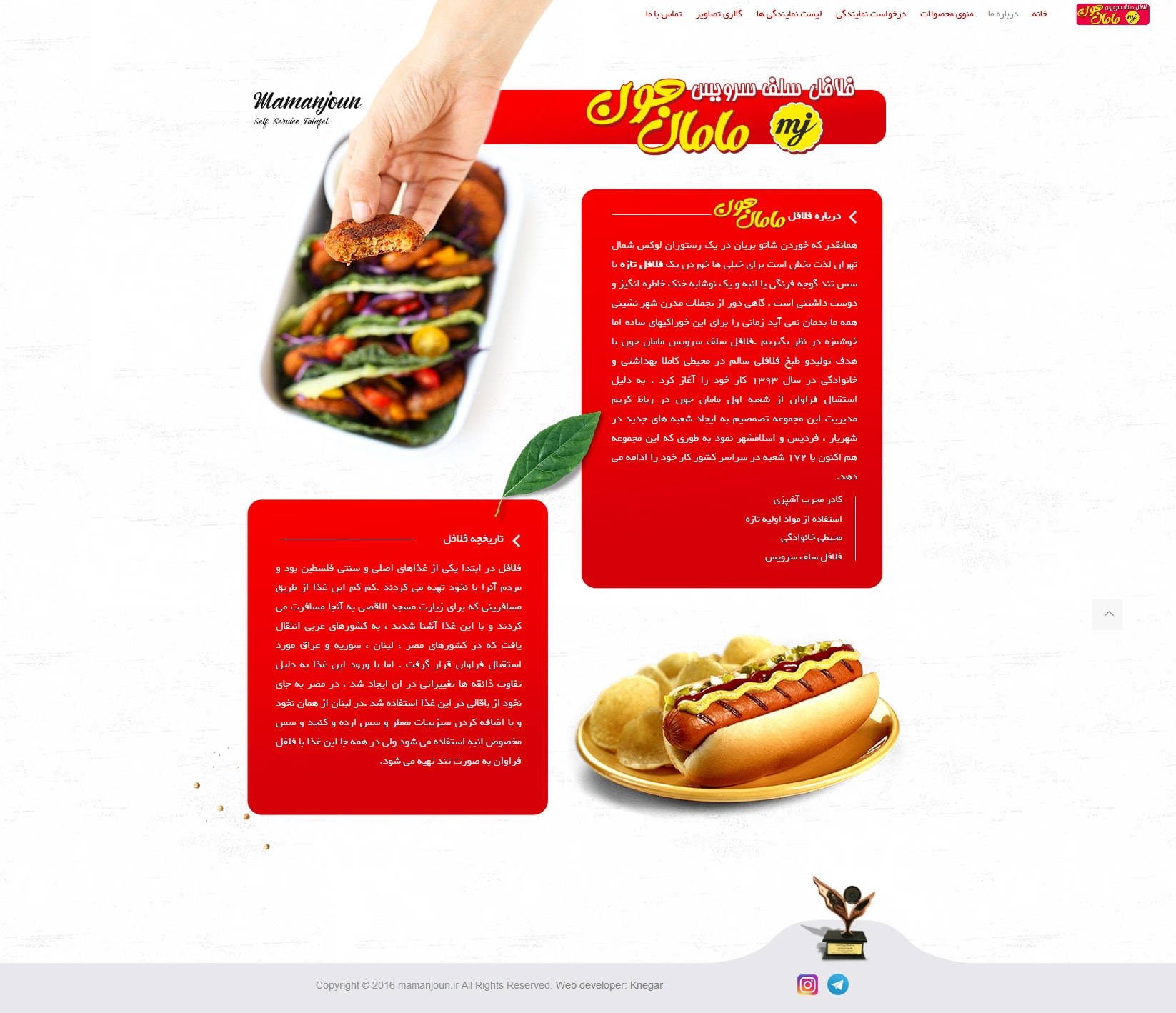 طراحی سایت فلافل مامان جون - توسط شرکت طراحی سایت کی نگار
